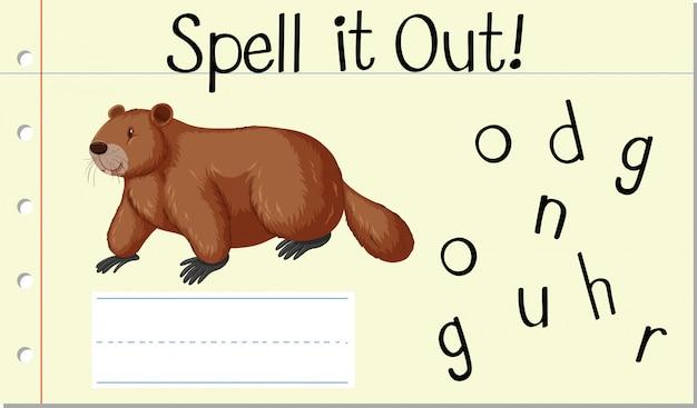 Soletrar a palavra em inglês groundhog