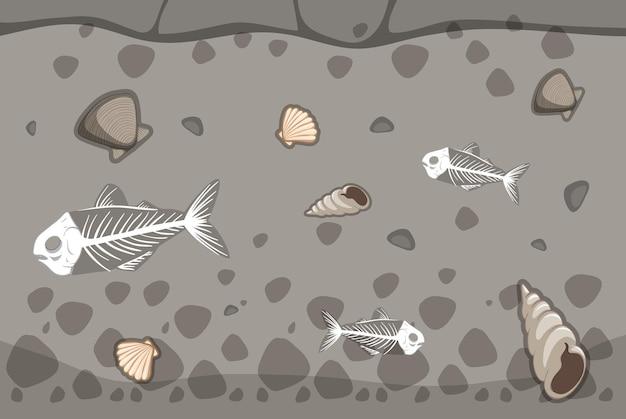 Solo subterrâneo com fósseis de espinha de peixe e concha do mar