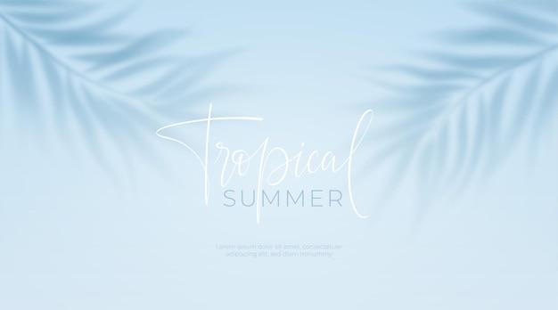 Sombra transparente realista de uma folha de palmeira no fundo azul