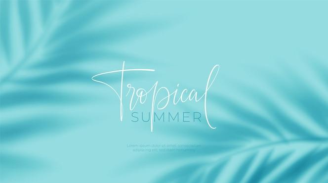 Sombra transparente realista de uma folha de uma palmeira sobre o fundo azul. sombra de folhas tropicais. maquete com sombra de folhas de palmeira. ilustração vetorial eps10
