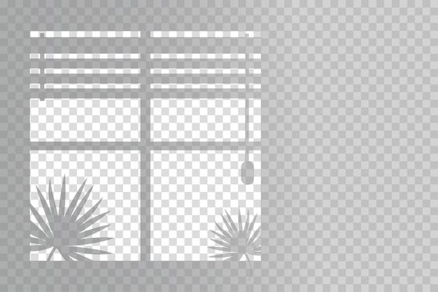 Sombras orgânicas e venezianas para efeitos de luz natural