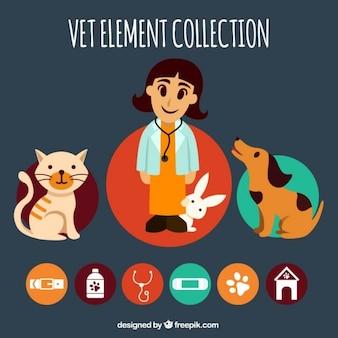 Sorrindo veterinário com animais e acessórios