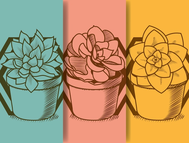 Succulent no desenho da mão do pote