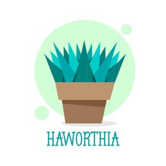 Suculenta haworthia em ícone de linha fina de maconha. ilustração moderna do vetor da planta da casa.