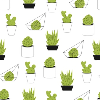 Suculentas e padrão sem emenda dos desenhos animados de cacto em um fundo branco para papel de parede, embalagem, embalagem e pano de fundo.