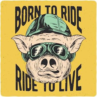T-shirt ou cartaz com ilustração de motoqueiro de porco.
