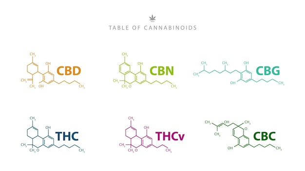 Tabela de canabinóides. fórmulas químicas de canabinóides naturais isolados