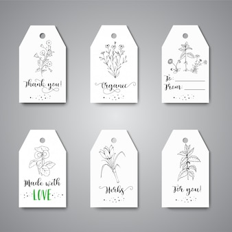 Tags com ervas e flores silvestres design de mão desenhada