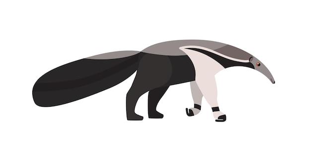 Tamanduá isolado no fundo branco. adorável animal insetívoro exótico incomum com focinho alongado. espécies selvagens nativas da américa. ilustração vetorial colorida em estilo cartoon plana.