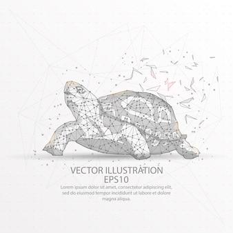 Tartaruga baixa armação de arame poli.