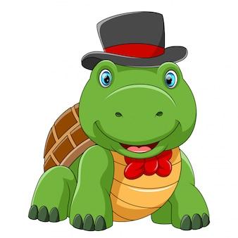 Tartaruga bonita usando chapéu com boa posando