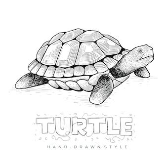 Tartaruga de vetor, ilustração animal desenhada à mão
