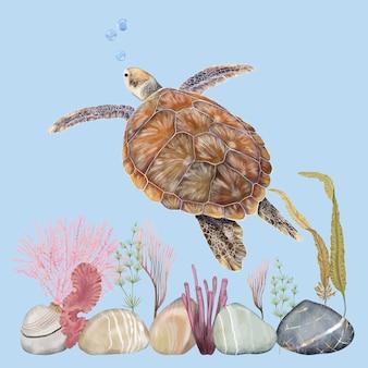 Tartaruga e mundo subaquático
