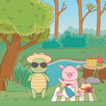 Tartaruga e porco na floresta
