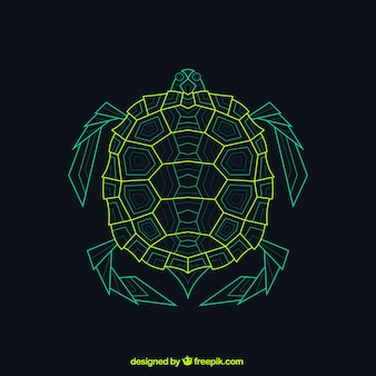 Tartaruga geométrica abstrata