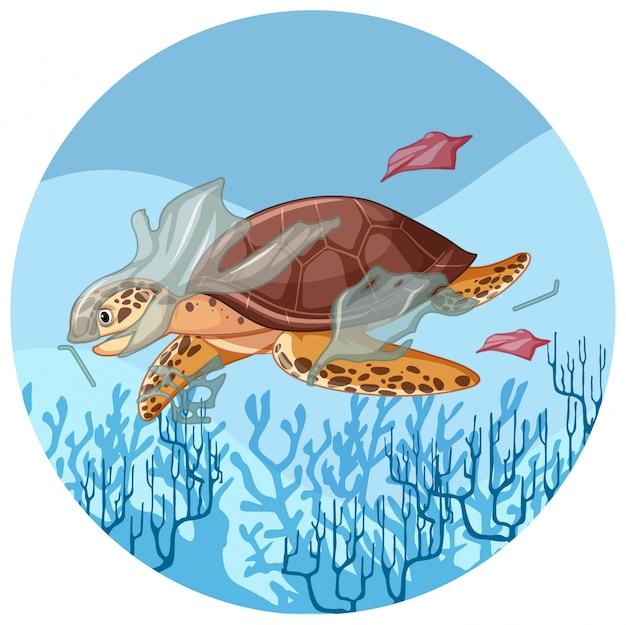Tartaruga marinha com sacos de plástico debaixo d'água