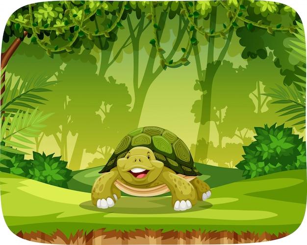 Tartaruga no cenário de tema de selva