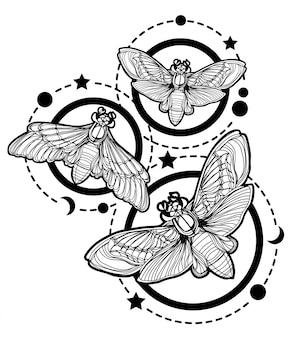 Tatuagem, arte, borboleta, mão, desenho, e, esboço, isolado