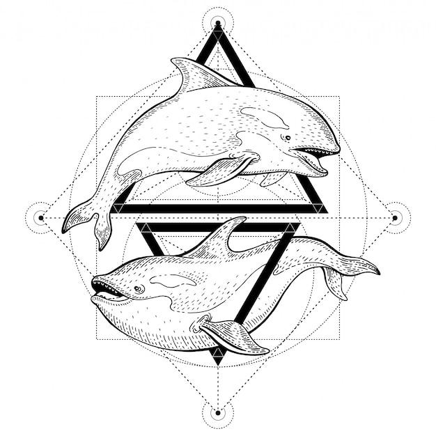Tatuagem de orca baleia assassina. ilustração em vetor geométrico com triângulos e animais marinhos. croqui de logotipo em estilo vintage hipster.