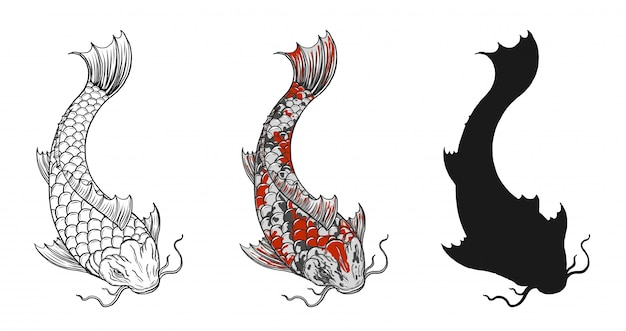 Tatuagem de peixe koi por desenho de mão