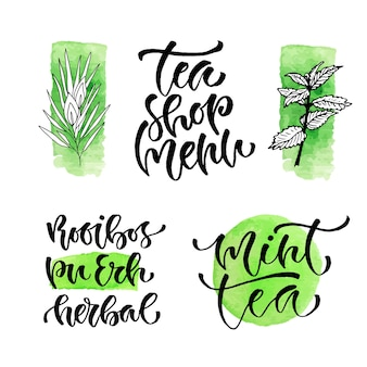 Tea shop menu vector frase caligráfica para capa. tipos de chá manuscritos para design de embalagens