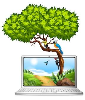 Tela computador, com, pássaros, ligado, árvore