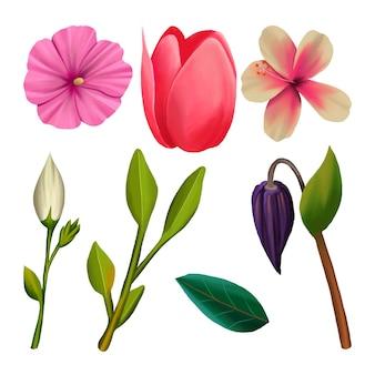 Tema de coleção de flores em aquarela primavera