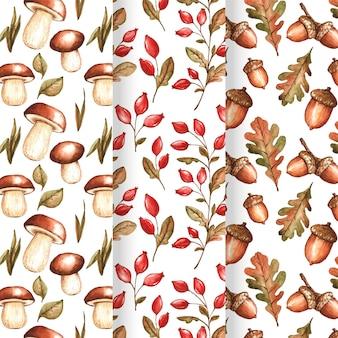 Tema de coleção de padrões de outono