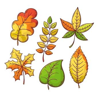 Tema de desenho de coleção de folhas de outono Vetor grátis