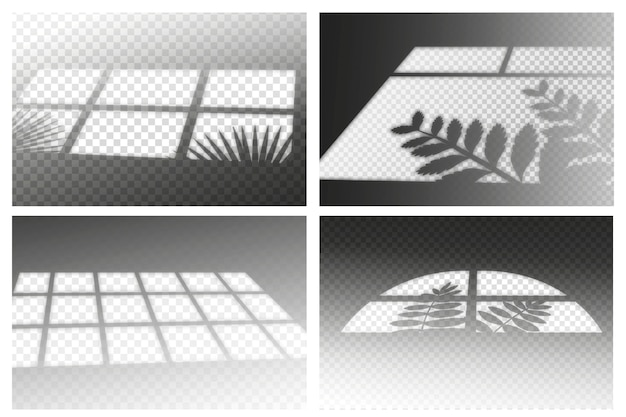 Tema de sombras transparentes com efeito ovelay