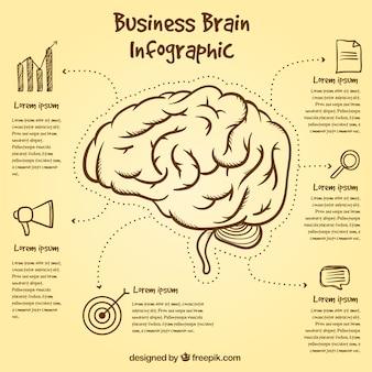 Template infográfico cérebro com itens desenhados à mão