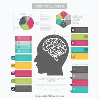 Template infográfico cérebro com opções de gráficos e diferentes