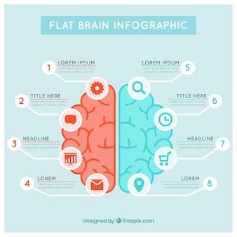 Template infográfico cérebro em tons azuis e vermelhos