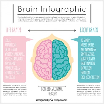 Template infográfico cérebro em tons de rosa e azul