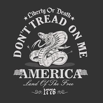 Terra da liberdade américa da ilustração livre