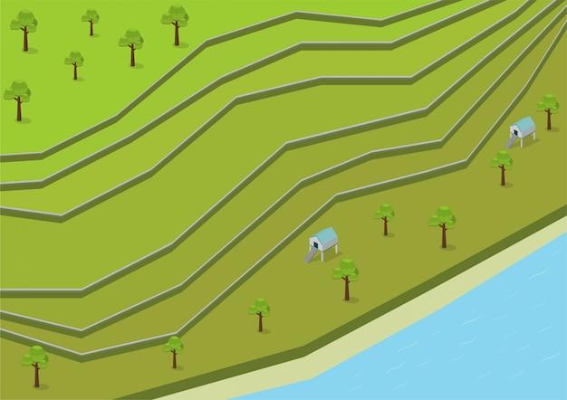 Terraços de arroz verde isométrica aérea