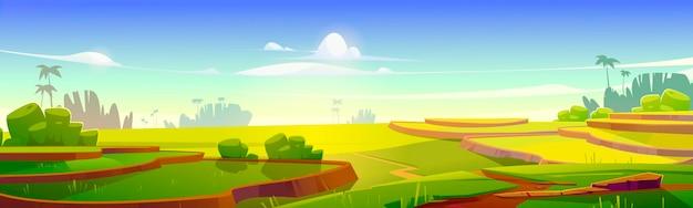 Terraços de campo de arroz asiático na ilustração dos desenhos animados de montanhas.