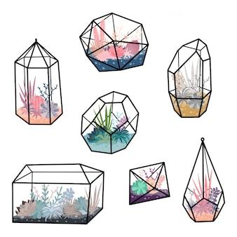 Terrários geométricos conjunto com plantas, suculentas, cactos. decoração de casa de estilo escandinavo. florariums de cristal de vidro isolados