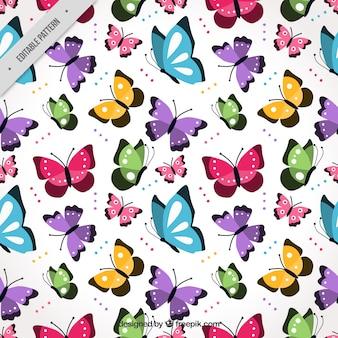 Teste padrão colorido com borboletas voando planas