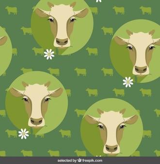 Teste padrão da vaca no estilo design plano