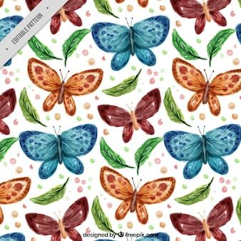 Teste padrão de borboleta e as folhas de aquarela