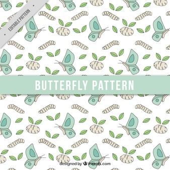 Teste padrão de borboleta e desenhos de folha