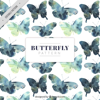 Teste padrão de borboleta no estilo da aguarela