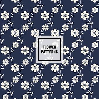 Teste padrão de flor bonita