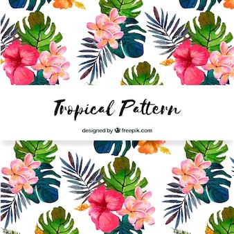 Teste padrão de flor tropical bonita