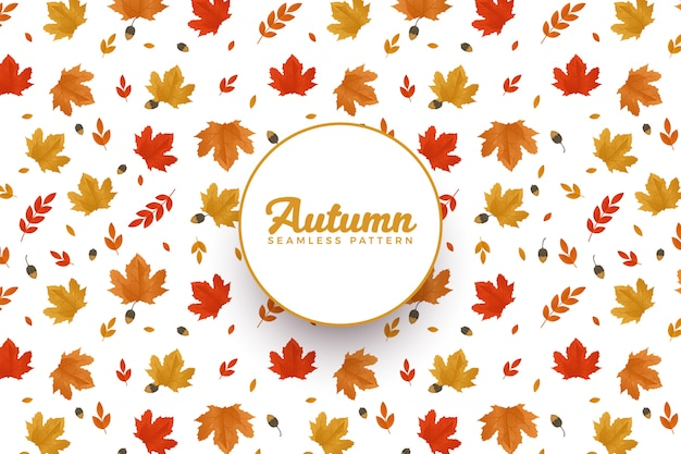 Teste padrão do outono