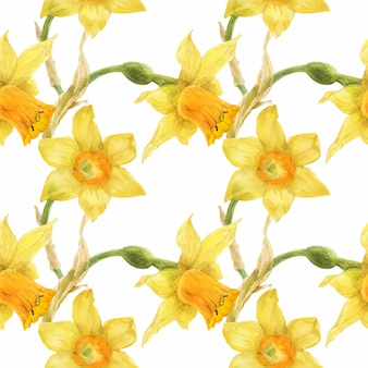 Teste padrão floral amarelo com narciso