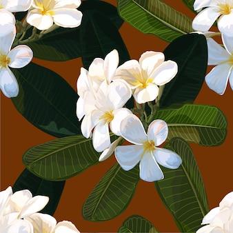 Teste padrão floral sem costura com flor de plumeria