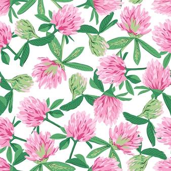 Teste padrão floral sem costura com trevo vermelho.