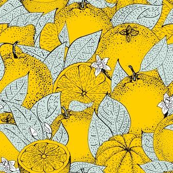 Teste padrão sem emenda de laranjas tiradas isoladas da mão e fatias no estilo do esboço.